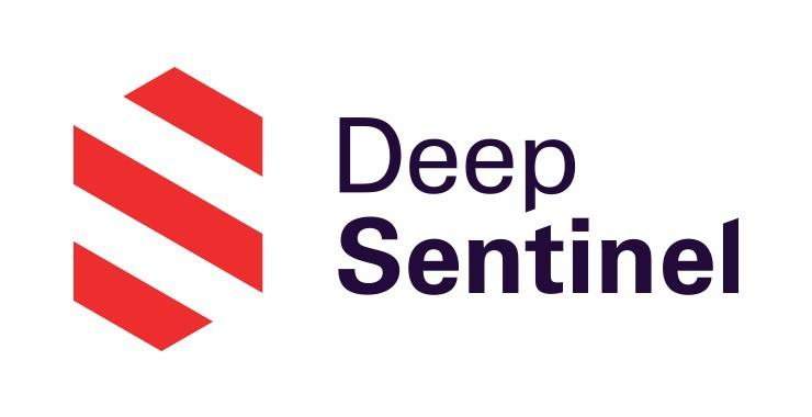 Deep Sentinel Logo