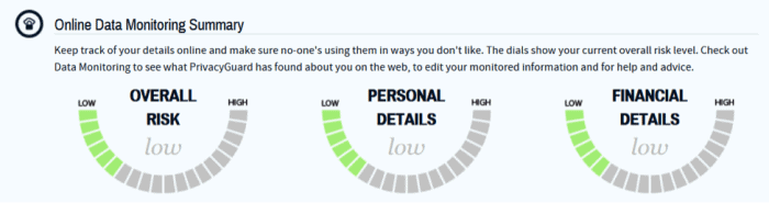 PrivacyGuard Online Data Monitoring Summary