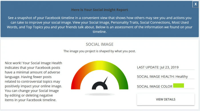 Social Insight Report