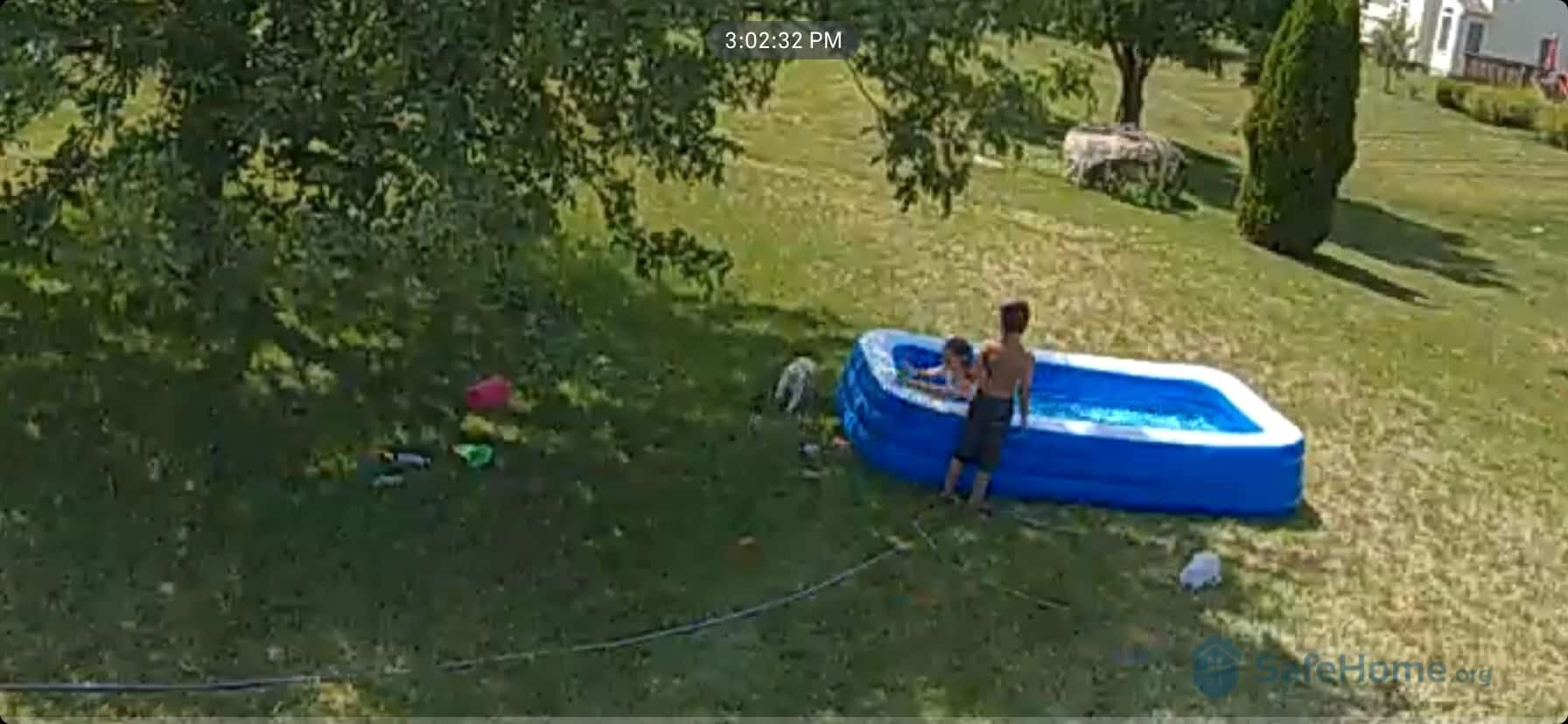 IQ outdoor cam view; watching over the youngins.