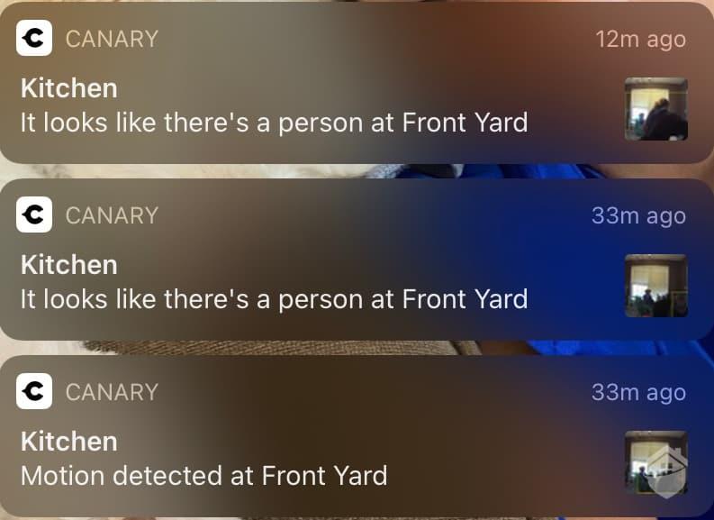 Canary Flex Notifications