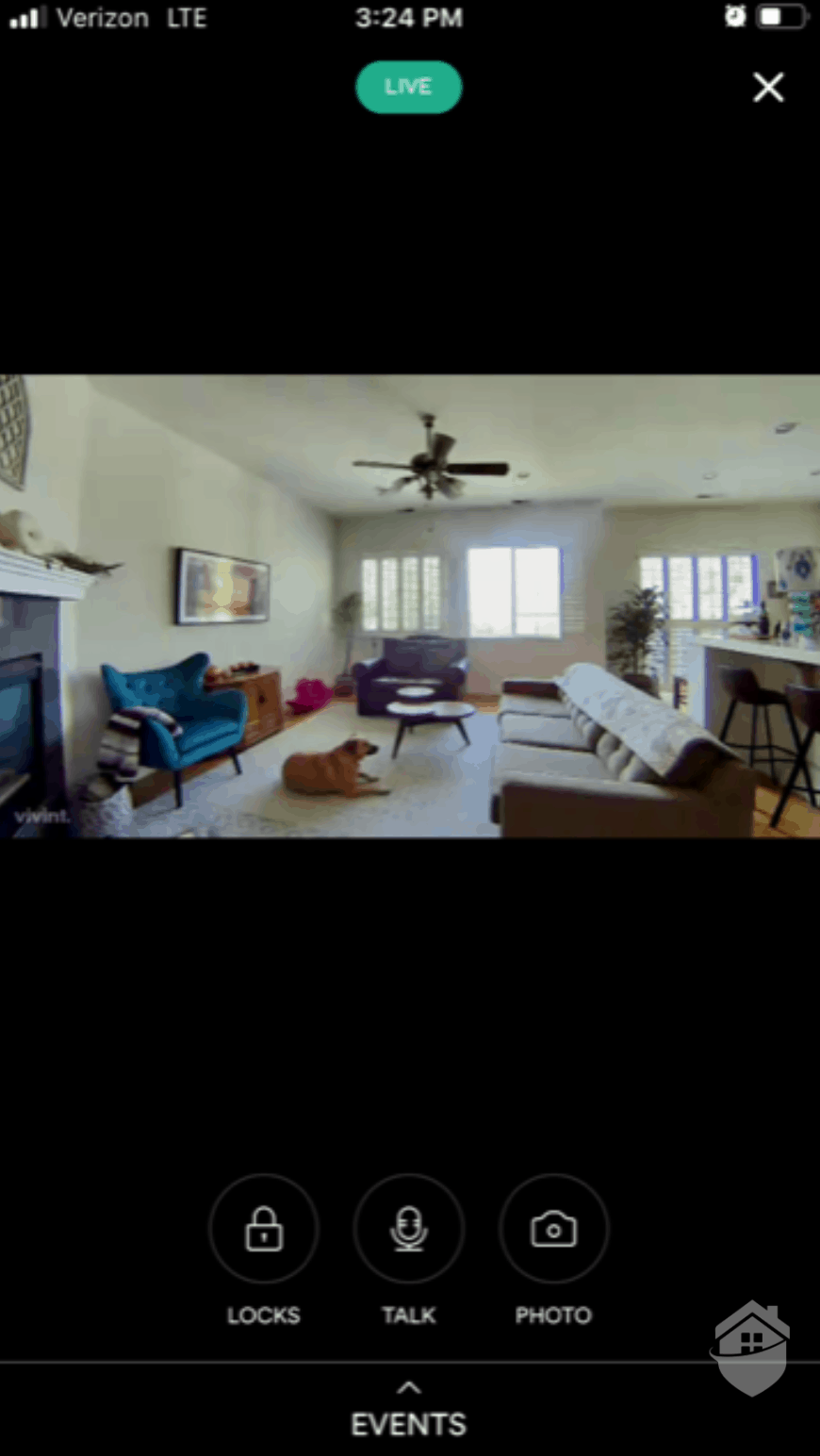 Vivint App Live Video
