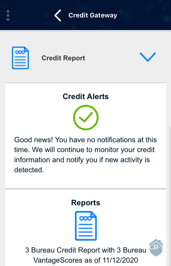 PrivacyGuard App - Credit Gateway