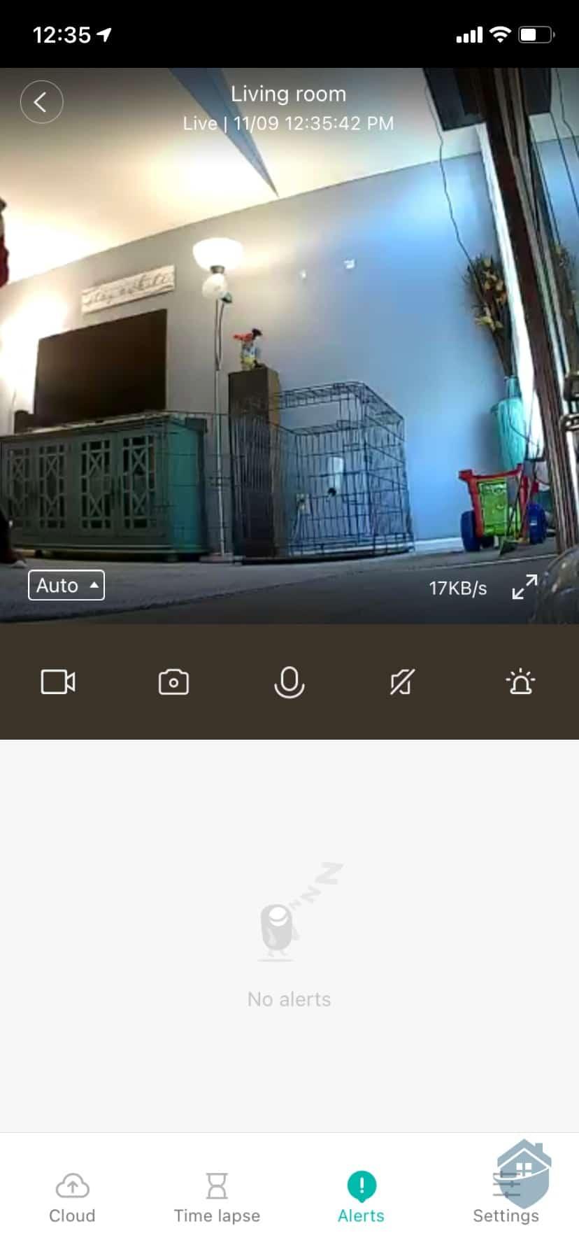YI Camera - Live Look