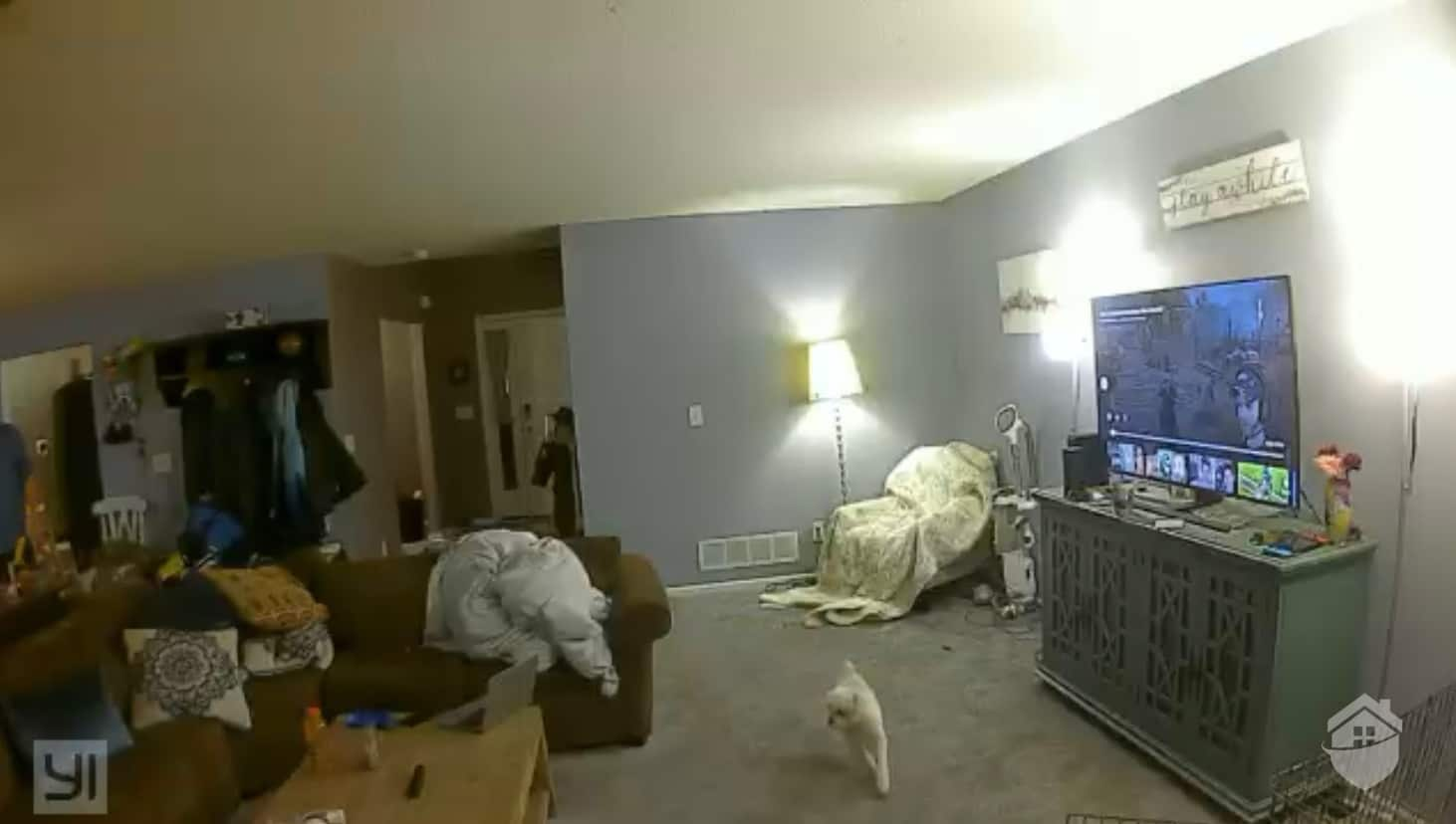 YI Indoor Camera Video Quality