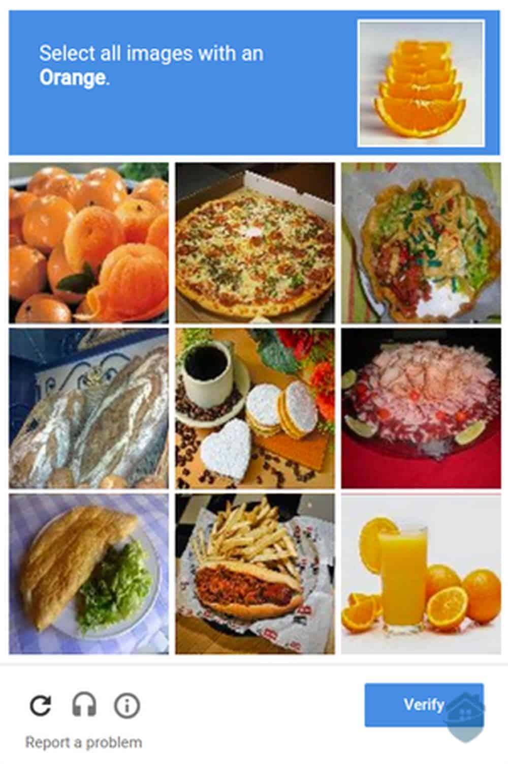 reCAPTCHA test